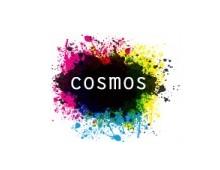 COSMOS – Center on Social Movement Studies